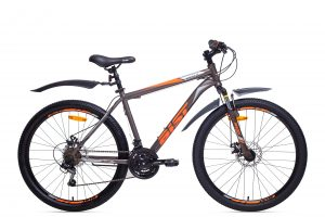 Quest Disc (grey-orange)